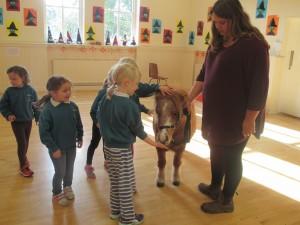 Pony Visit
